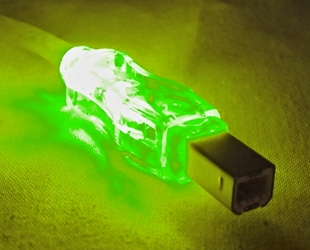 10ft USB 2.0 480Mbps Type A Male to B Male Translucent Illuminated/Lighted Cable with Green LEDs CC2209C-10GNL 037229229844